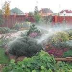 Организация полива растений
