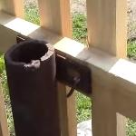 Забор из штакетника по новому - гвоздями или шурупами