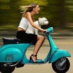 Нужен ли скутер на загородной усадьбе?