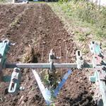Подкапыватель картошки для мини трактора