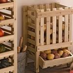 Как сохранить урожай овощей?