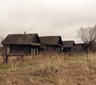 В Беларуси возродят нежилые деревни!