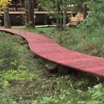 Деревянная дорожка на бетонных блоках