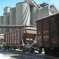 Беларусь не скоро избавится от дефицита цемента