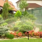 Своевременный полив – залог отличного сада!