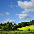 В Беларуси прекратят «халявную» раздачу земельных участков