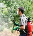 Как правильно выбрать садовый опрыскиватель?