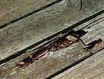 Применение отработанного масла, для защиты деревянных конструкций