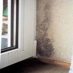 Мокрые углы  в комнате и как избавится от этого