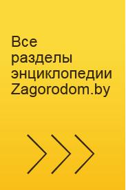 Все разделы энциклопедии